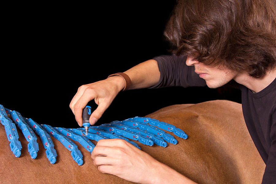 Pferderückenvermessung mit Equiscan - Mj Western Art Saddlery